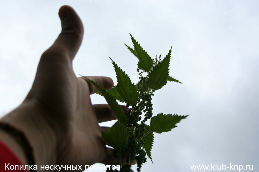 teshilovskoe-gorodishhe-kak-dobratsja_03