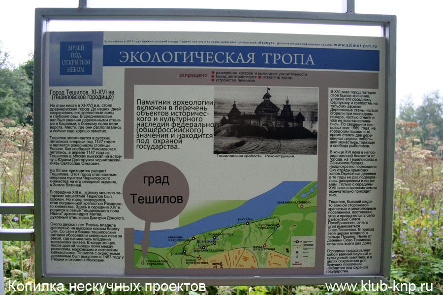 Спас-Тешиловское городище