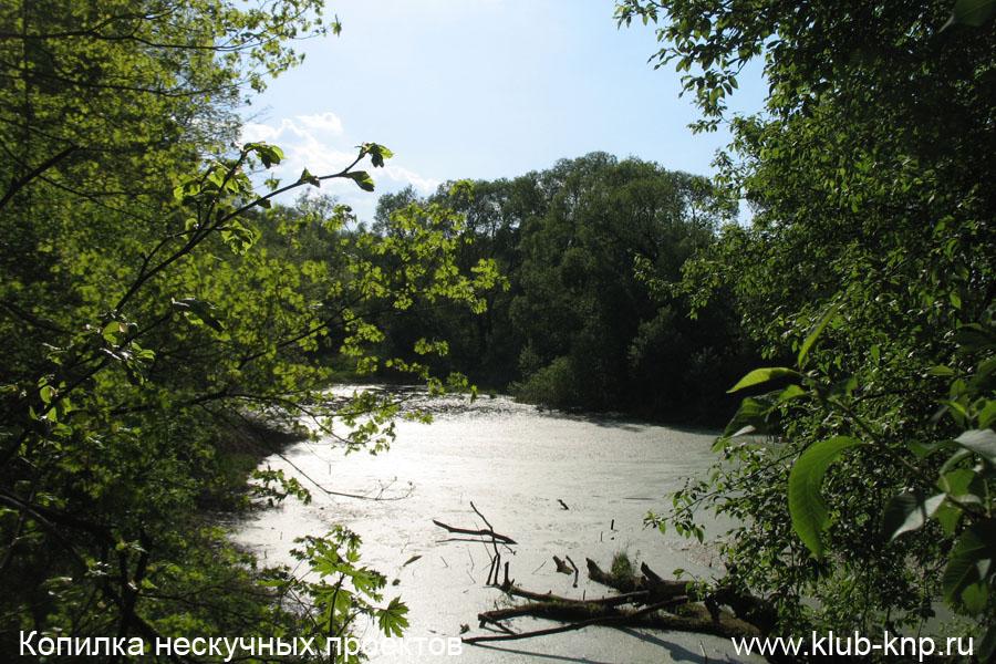 Графский пруд в Пущино